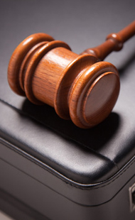 Legal Services   Specialization